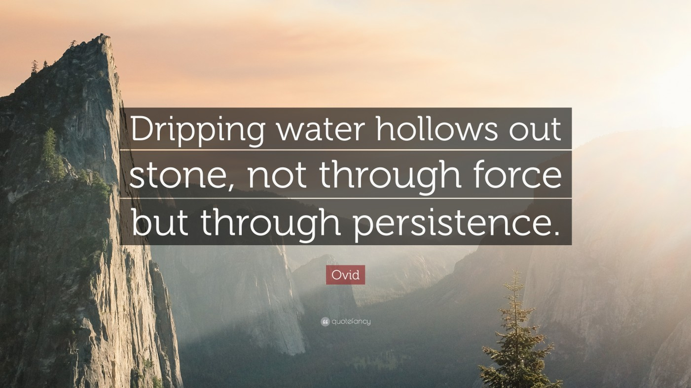 Persistance patience endurance